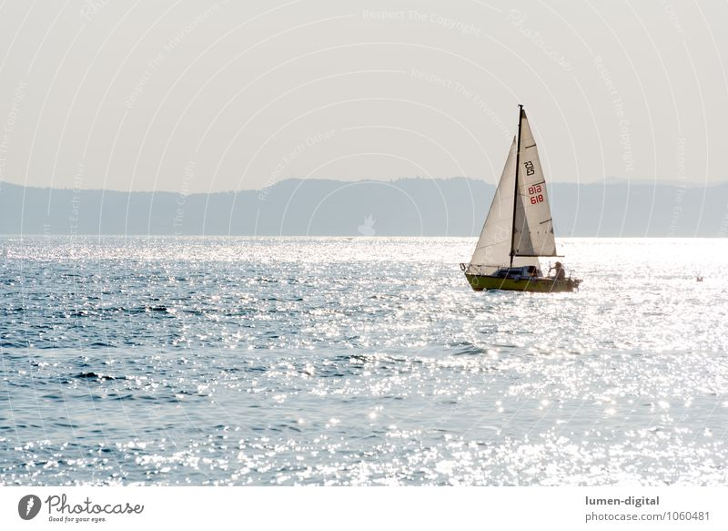 Sailboat on a lake in the back light Sun Island Waves Aquatics Sailing Coast Lakeside Beach Yacht Watercraft Glittering Action Lake Garda Exterior shot
