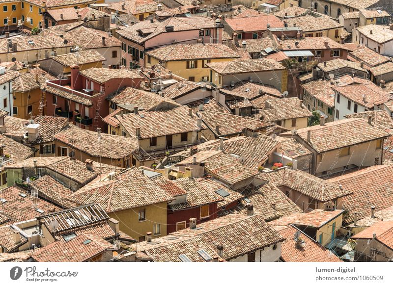 Roofs of an Italian city House (Residential Structure) Landscape Town Downtown Old town Overpopulated Deserted Detached house Manmade structures Wall (barrier)