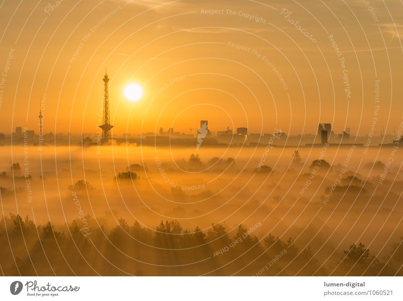 City Sun Tree Clouds Forest Berlin Germany Fog High-rise Roof Tower Skyline Image Capital city Tourist Attraction Anticipation