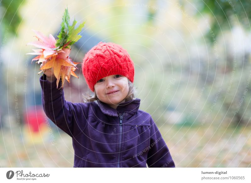 Child waves with leaves Girl Infancy 1 Human being 1 - 3 years Toddler Autumn Leaf Cap Laughter Friendliness Happiness Salutation Autumn leaves Wave