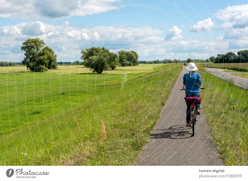 Cyclist on a dyke Leisure and hobbies Vacation & Travel Tourism Trip Cycling tour Summer Sports Woman Adults Nature River bank Dike Driving Action Sky