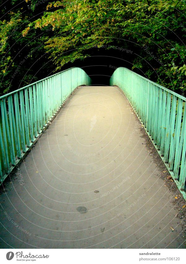 Tree Green Summer Loneliness Forest Above Garden Lanes & trails Park Bridge Retro Handrail Afternoon Sunday Black Holes