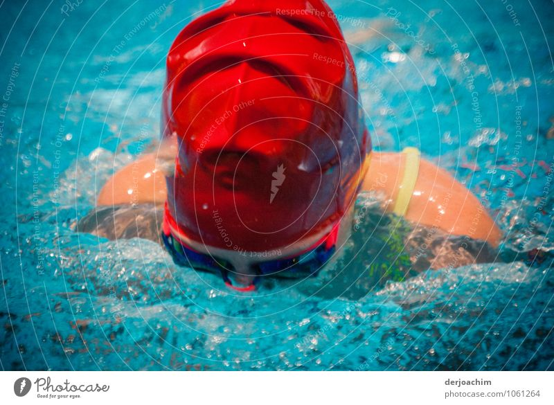 Red is fast Joy Athletic Swimming & Bathing Summer Swimming pool Feminine Girl Head Shoulder 1 Human being 8 - 13 years Child Infancy Water Beautiful weather
