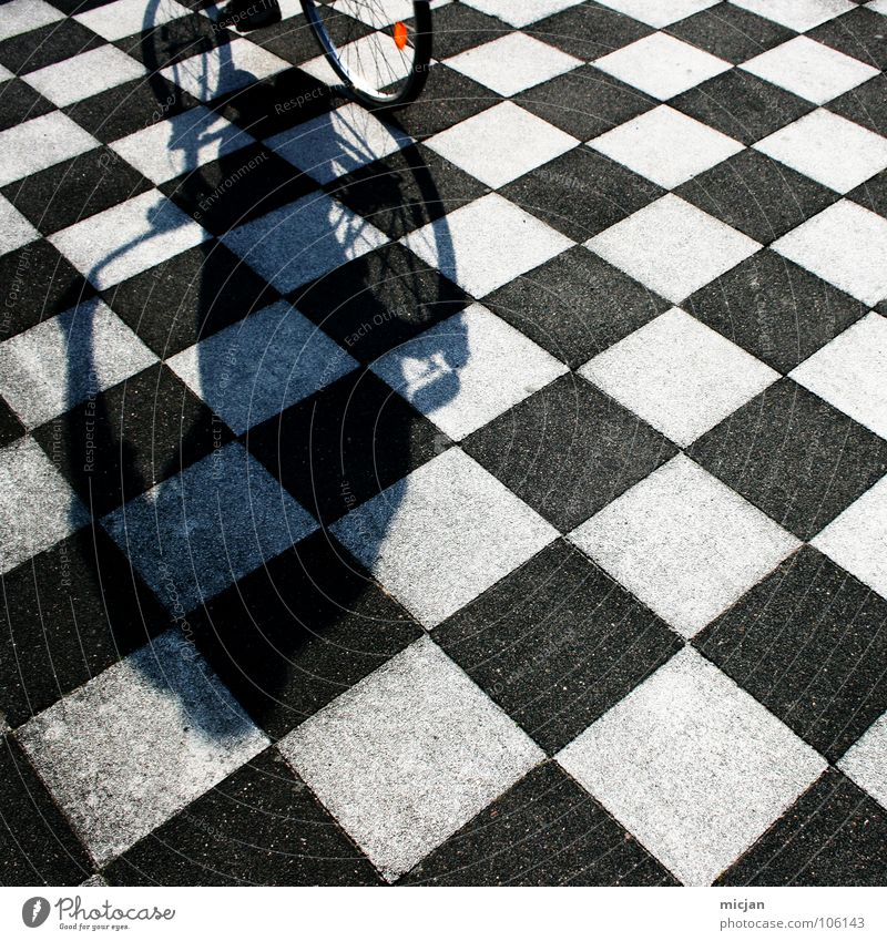 I used to dance with my bike Dance floor Pattern Bicycle Driving Black White Checkered Stewart tartan Floor covering Hard Arrangement Alternating Chic Playing