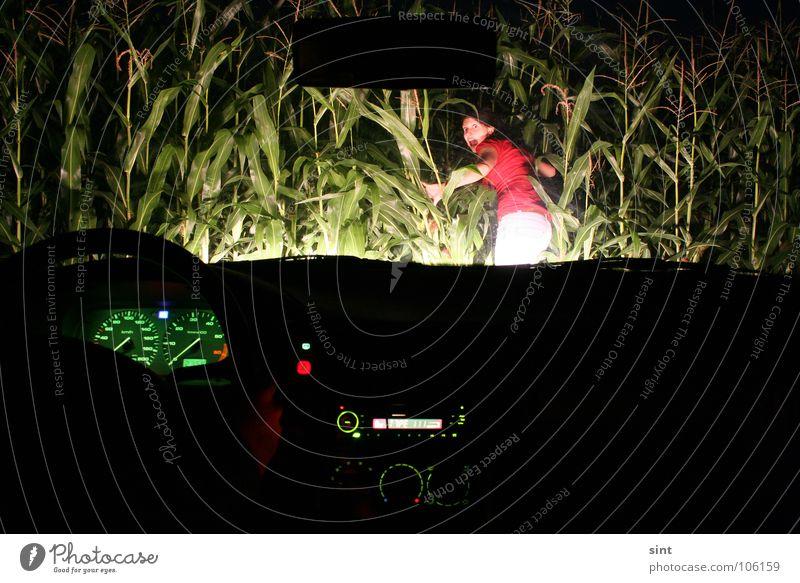 Woman Car Fear Transport Driving Lawn Hunting Radio (broadcasting) Panic Heat Maize Steering wheel Speedometer Maize field