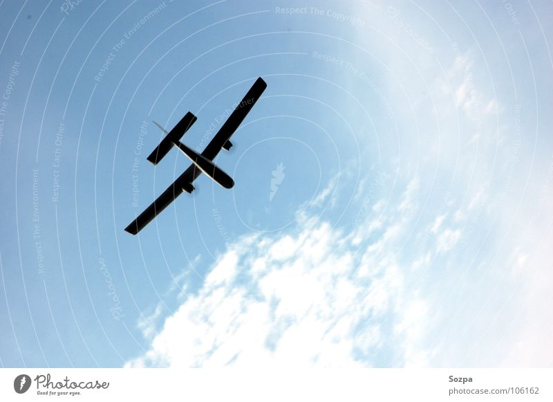 Jause´s Bird Airplane Clouds Silhouette Model aeroplane Playing Sky Blue Aviation Freedom