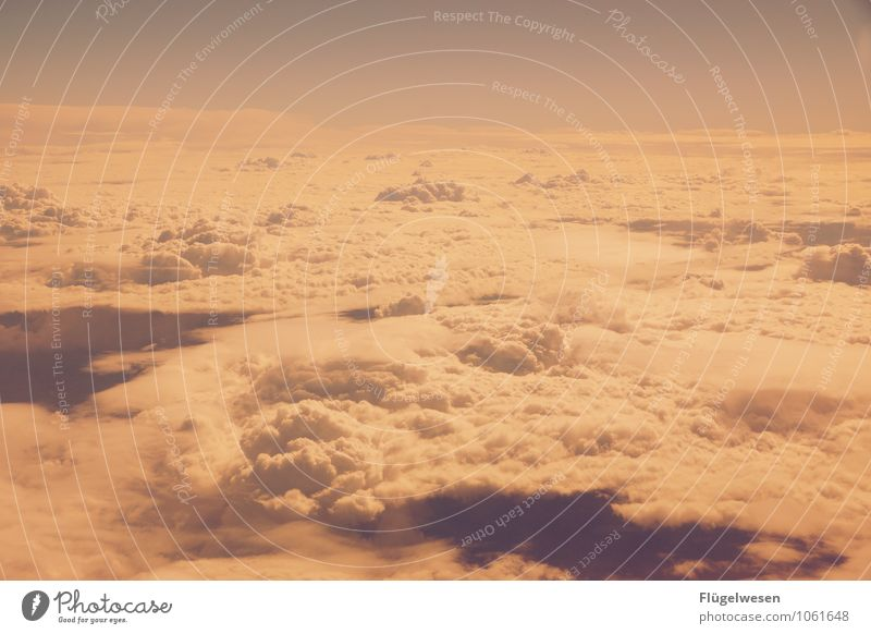 Fly away 3 Sky Heaven Clouds Cloud cover Flying Aviation Airplane Cloud formation Freedom Cloudless sky Firmament Altocumulus floccus Vapor trail