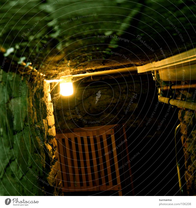 there are no monsters! Cellar Cold Stone Dark Stone wall Light Secret passageway Search Fear Hero Brave Risk Monster Penitentiary Panic Enclosed Dangerous
