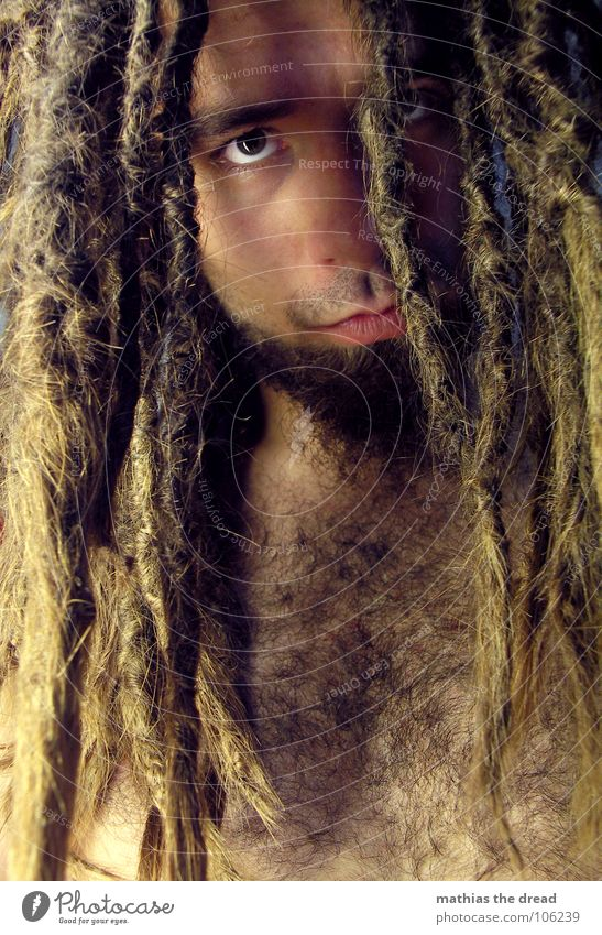 Mathias The Dread XI Dreadlocks Felt Long Dark Vessel Man Masculine Strong Threat Shoulder Concealed Nerviness Visual spectacle Shadow play Anger