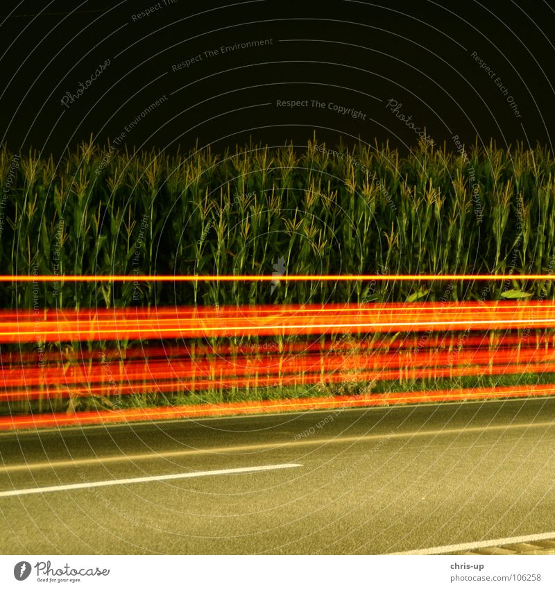 Red stripes Long exposure Stripe Green Night Dark Maize field Asphalt Light Exposure Country road Motoring Blur Transport Strip of light Visual spectacle Speed