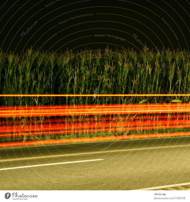 Red stripes Long exposure Stripe Green Night Dark Maize field Asphalt Light Exposure Country road Motoring Blur Transport Strip of light Visual spectacle Speed