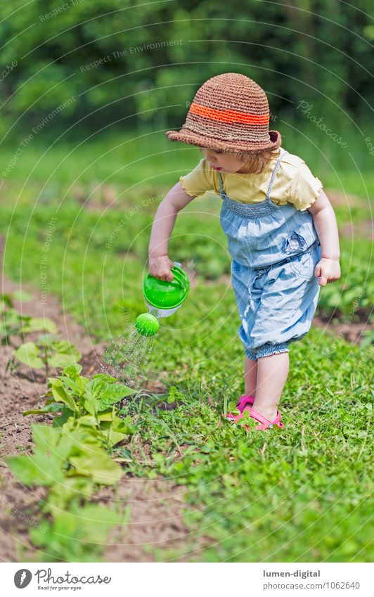 Human being Child Plant Beautiful Green Summer Garden Toddler Make Garden Bed (Horticulture) Gardening Agricultural crop Diligent Watering can