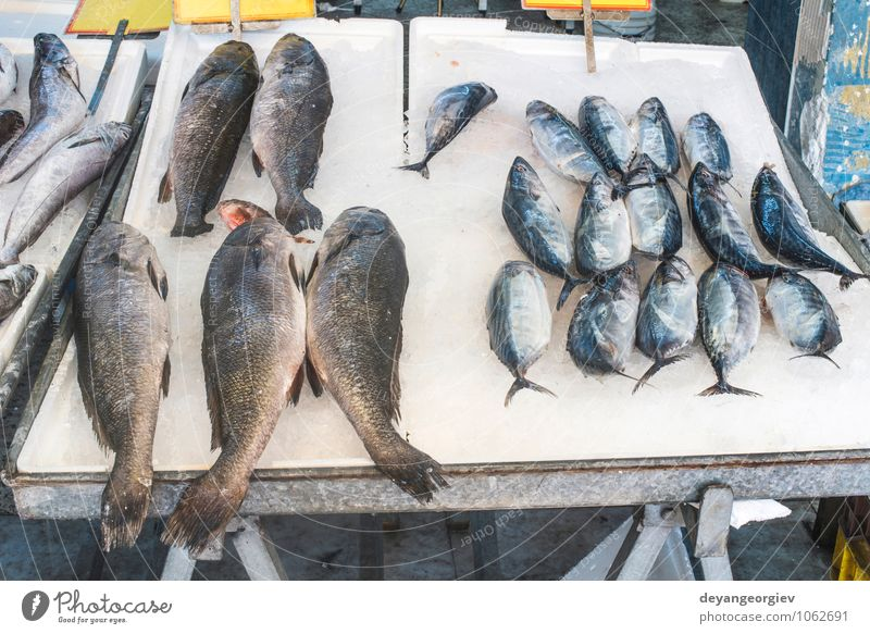 Fish on ice in the market. Seafood Shopping Industry Animal Sell Fresh Delicious Frozen Raw Storage Sale Salmon Protein dieting uncooked Colour photo