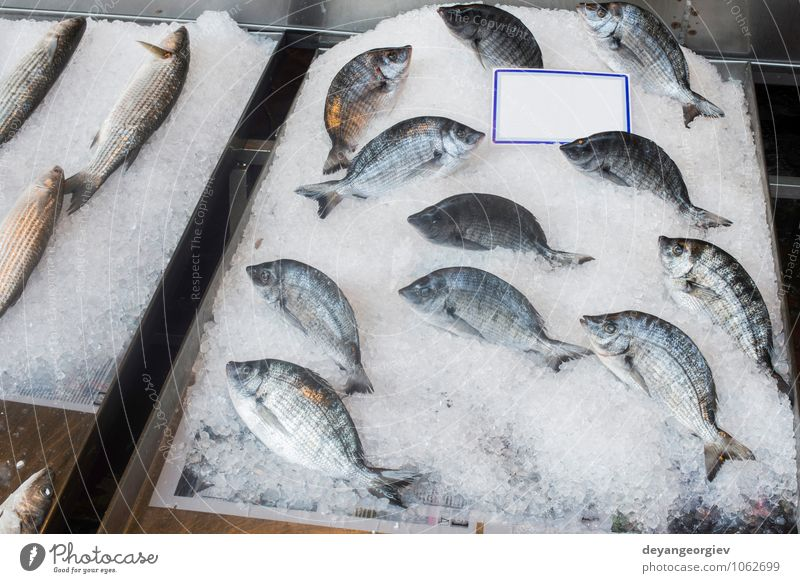 Fish on ice in the market. Seafood Shopping Industry Animal Sell Fresh Delicious bream Frozen Raw Storage Sale Salmon Supermarket Protein uncooked Colour photo