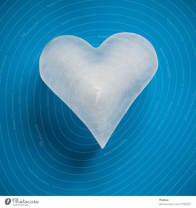 Blue Loneliness Cold Life Sadness Love Emotions Lighting Playing Happy Couple Contentment Ice Illuminate Success Heart