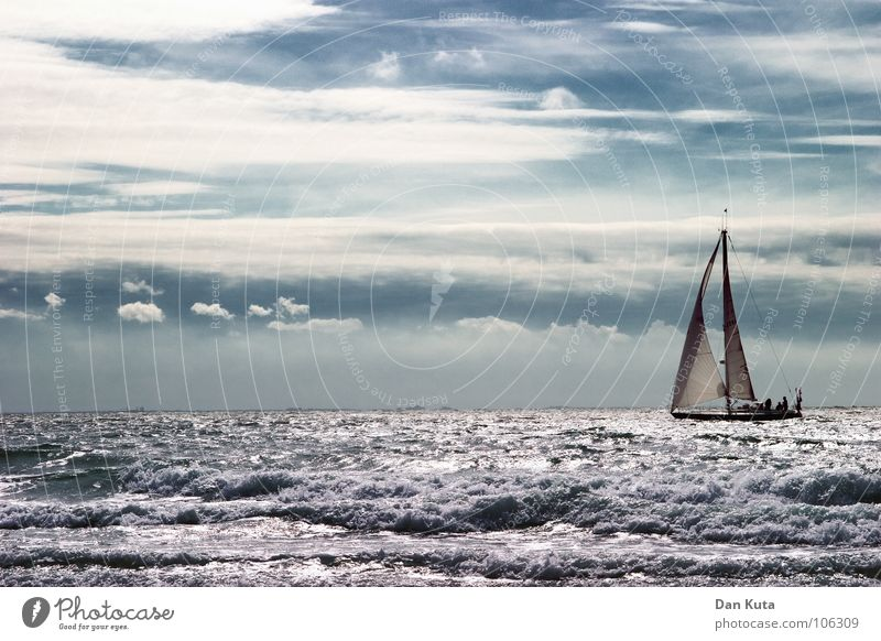 Sky White Ocean Blue Vacation & Travel Calm Clouds Freedom Lake Watercraft Multiple Violet Wild animal Sailing Waves Many