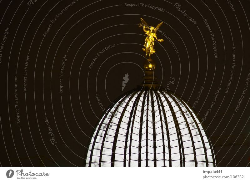lemon squeezer Light Night Black White Domed roof Long exposure Trumpet Detail Historic Dresden Angel Gold interior light Lamp Old town Scaffold Illuminate