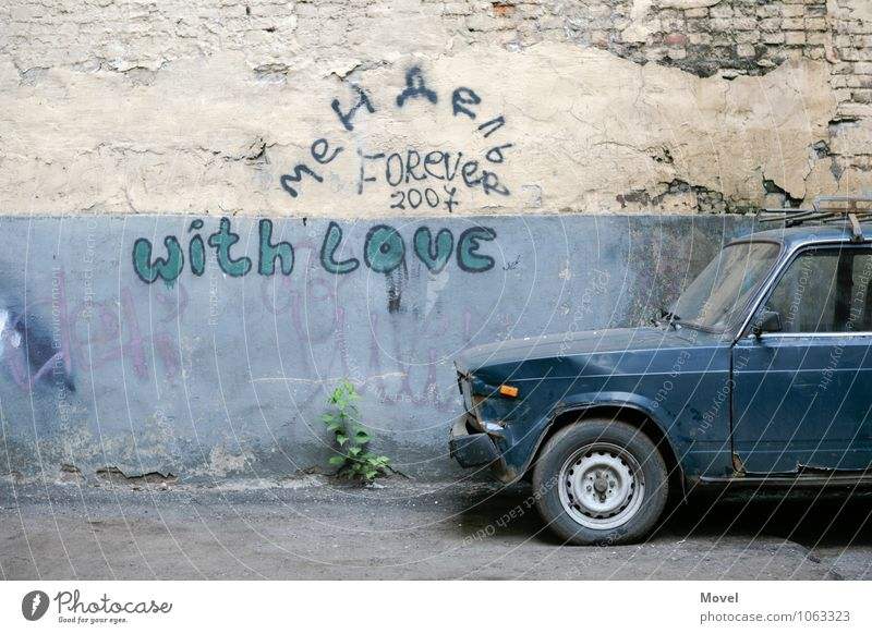Backyard with Love Trip Adventure Plant Foliage plant Moscow Russia Town Wall (barrier) Wall (building) Facade Vehicle Car Vintage car Sign Characters Old