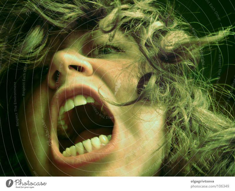 Wild animal Dangerous Teeth Anger Scream Aggravation Aggressive Alarming Trenchant