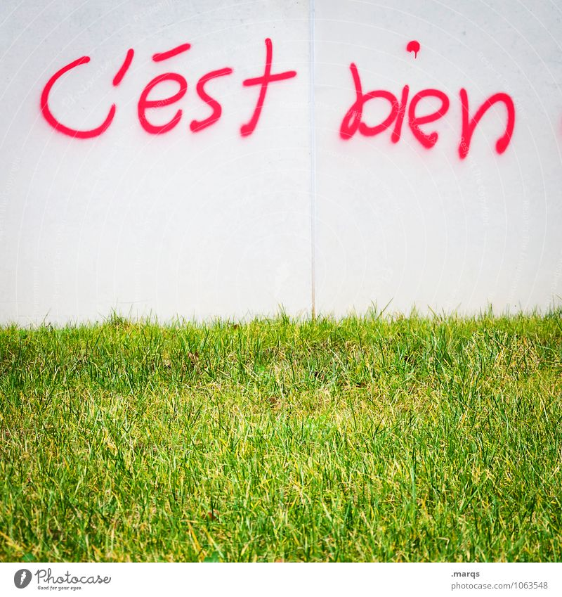 alright Meadow Wall (barrier) Wall (building) Characters Graffiti Bright Green Red White Spring fever Anticipation OK French Positive Good Colour photo