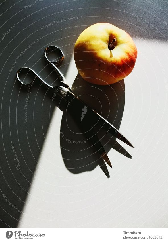Red Healthy Eating Black Yellow Emotions Gray Metal Lie Design Office Esthetic Point Simple Apple Still Life Workplace