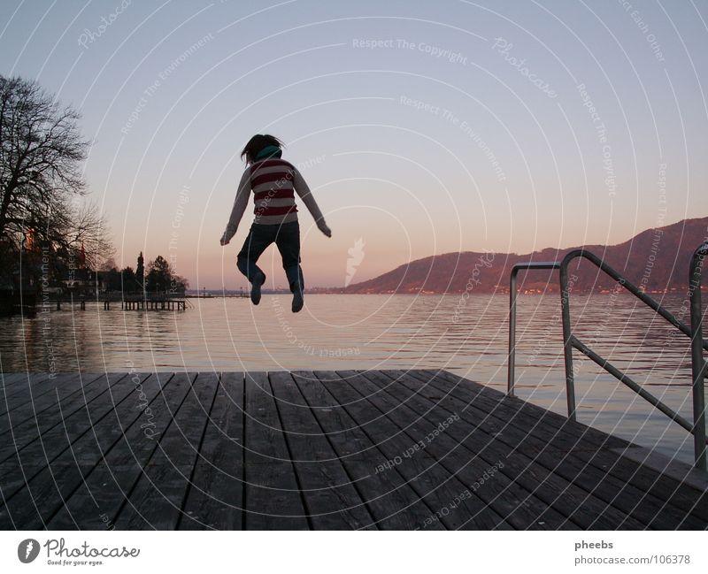 Summer Joy Jump Wood Lake Warmth Energy industry Physics Swimming & Bathing Footbridge Wooden board July Lake Attersee