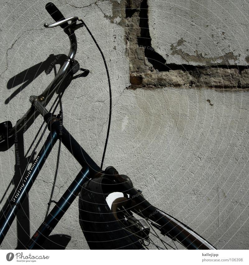 Green Grass Wall (barrier) Lamp Bicycle Technology Farm Wheel Seating Coat Backyard Hose Vintage car Rubber Chrome Rear light