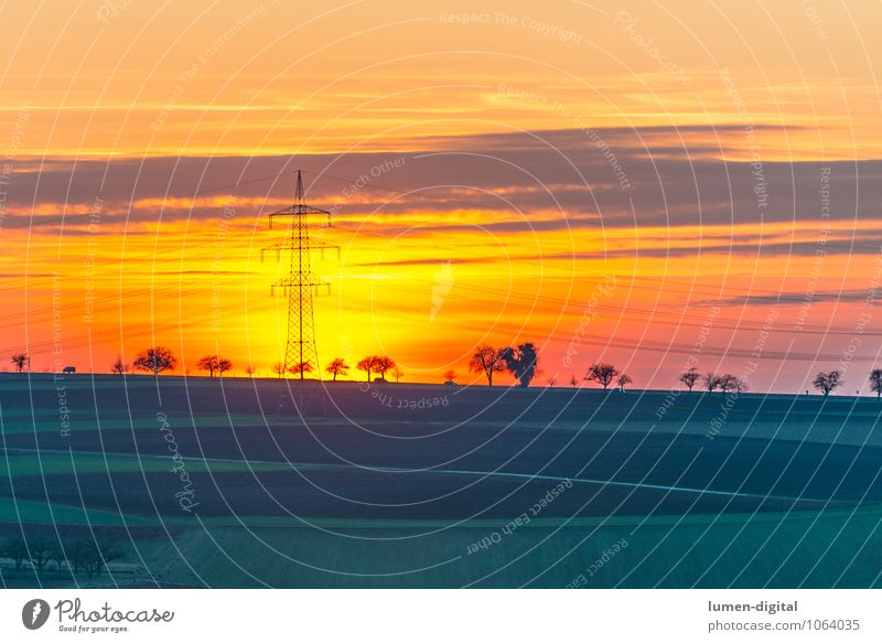 Landscape with power pole Energy industry Clouds Horizon Sunrise Sunset Tree Field Green Red Row of trees golden Orange Lighting Electricity pylon Exterior shot