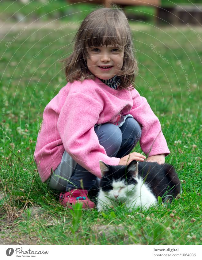 Child with cat Joy Beautiful Playing Children's game Garden Girl 3 - 8 years Infancy Grass Meadow Blonde Pet Cat Touch Laughter Looking Happiness Funny Natural