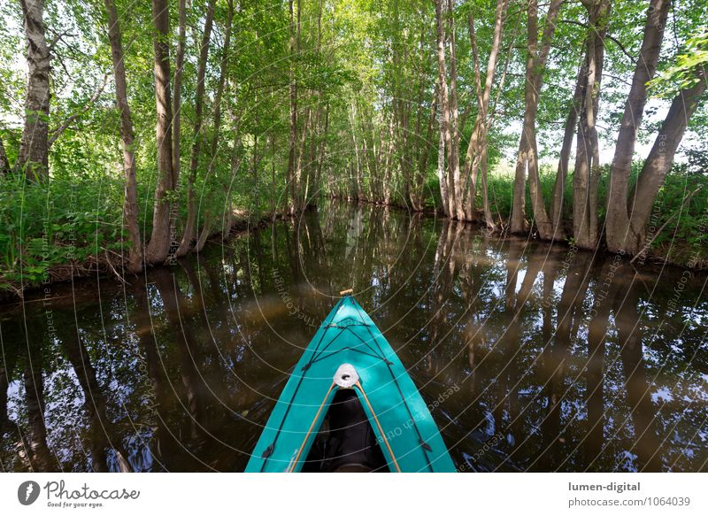 Paddle boat on a canal Relaxation Leisure and hobbies Summer vacation Aquatics Water Spring Tree River bank Brook Boating trip Sport boats Watercraft Athletic
