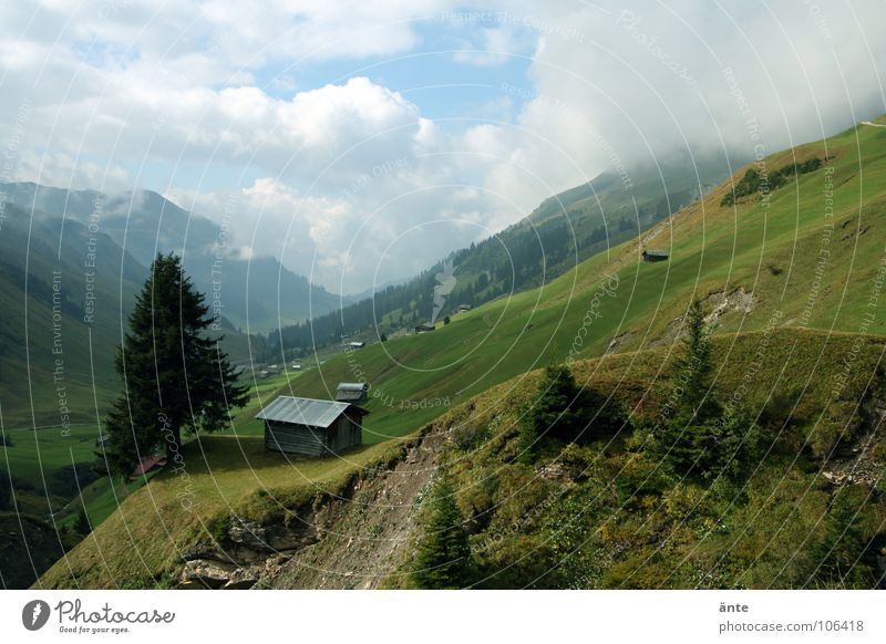 stopped Alpine hut Fir tree Canton Graubünden Switzerland Home country Dangerous Mountaineering Air Mountain meadow Summer Slope Erosion Vantage point Cottage