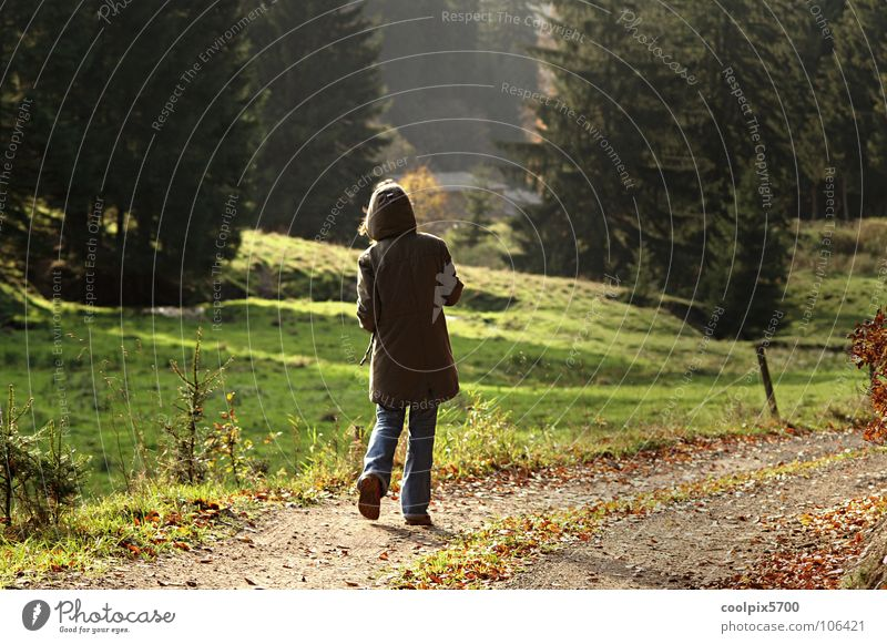 Youth (Young adults) Tree Green Loneliness Forest Relaxation Autumn Meadow Lanes & trails Hiking To go for a walk Leisure and hobbies Pasture Fence Home