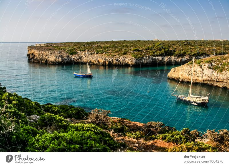 Mallorca from its beautiful side 47 - bay with boats Vacation & Travel Tourism Trip Adventure Far-off places Freedom Summer vacation Environment Nature