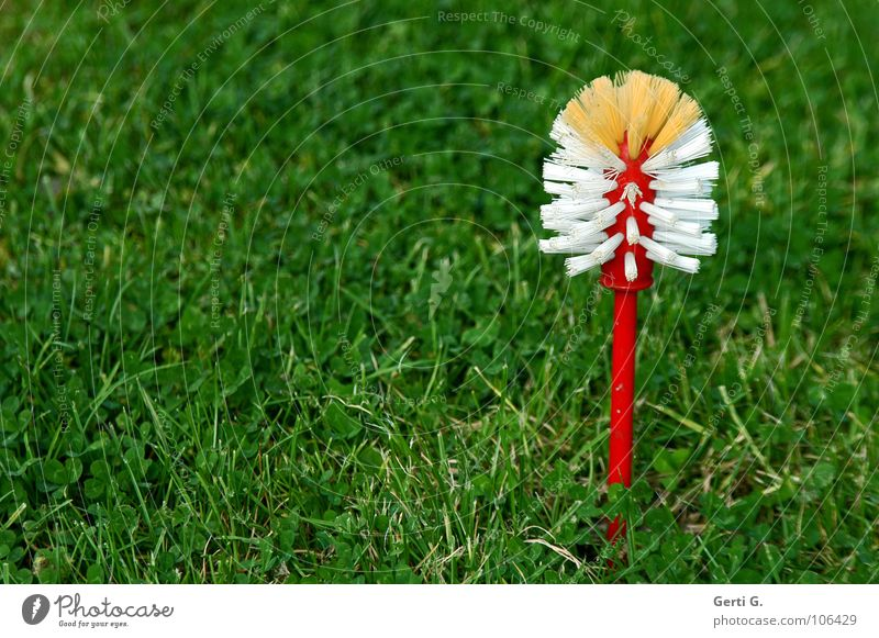 White Red Meadow Grass Lawn Cleaning Stalk Statue Obscure Plastic Household Quality Body care tools Brush Bristles Dry goods