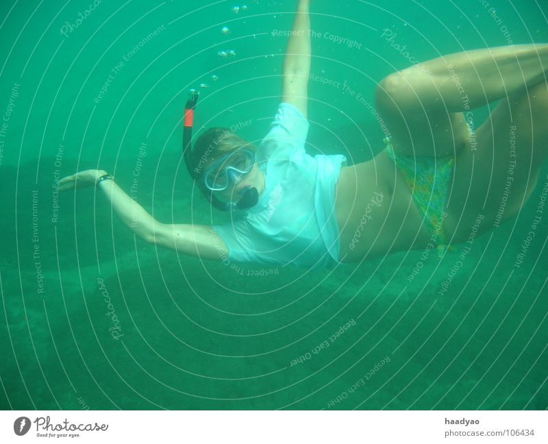 Woman Human being Water Ocean Summer Joy Beach Vacation & Travel Africa Dive Aquatics Atlantic Ocean Snorkeling Nixie (Water Spirit) Diving equipment