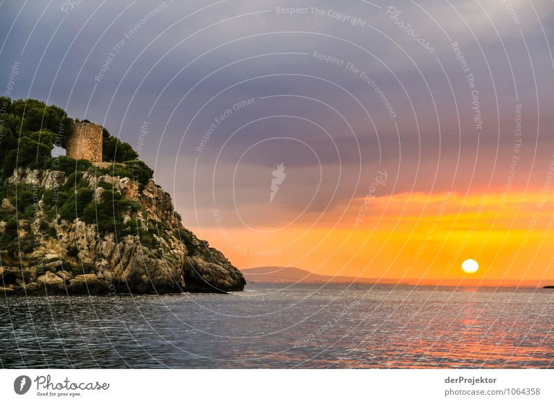 Mallorca at its best 49 - Tower at sunset Vacation & Travel Tourism Trip Adventure Far-off places Freedom Summer vacation Environment Nature Landscape Plant