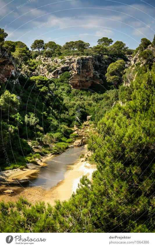 Mallorca from its most beautiful side 42 - Lonely gorge Vacation & Travel Tourism Trip Adventure Expedition Summer vacation Environment Nature Landscape Plant