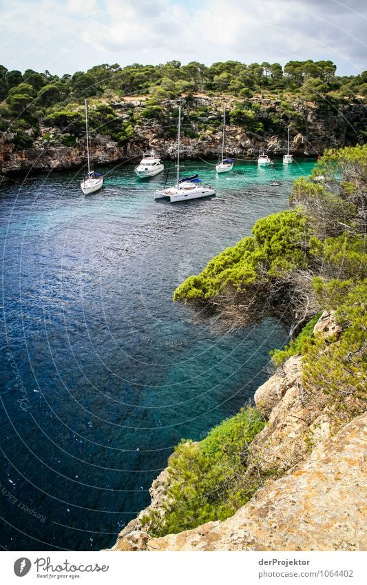 Mallorca from its beautiful side 68 - bay with sailing boats Leisure and hobbies Vacation & Travel Tourism Trip Adventure Far-off places Freedom Cruise