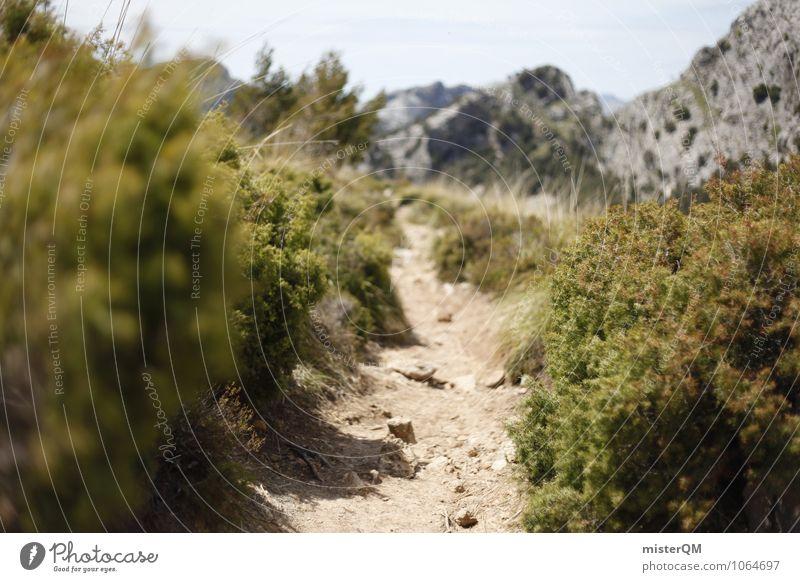 Spanish paths. Environment Nature Landscape Climate Beautiful weather Adventure Esthetic Lanes & trails Majorca Hiking Green Stony Spain Colour photo
