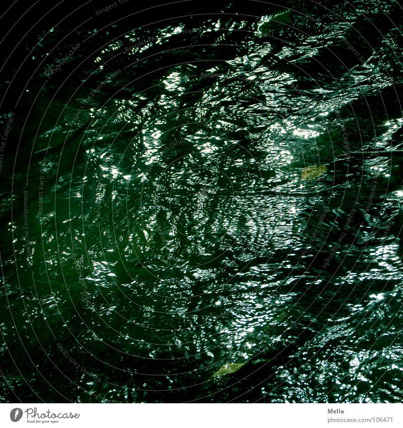 Water Green Dark Glittering Wet River Deep Brook Eerie Splashing