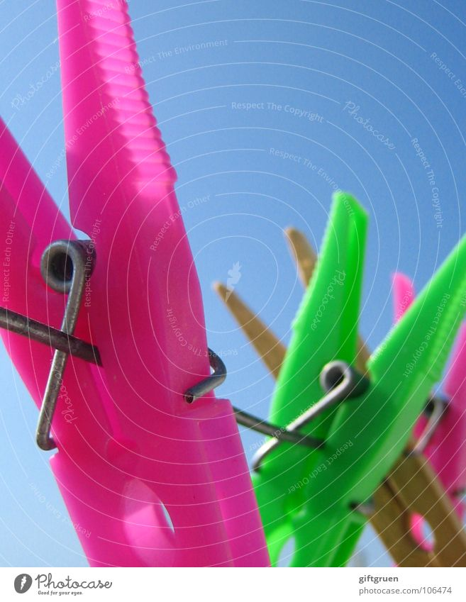 Sky Green Colour Wood Pink Rope Craft (trade) Laundry Blue sky Clothesline Holder Clothes peg Grass green Bilious green
