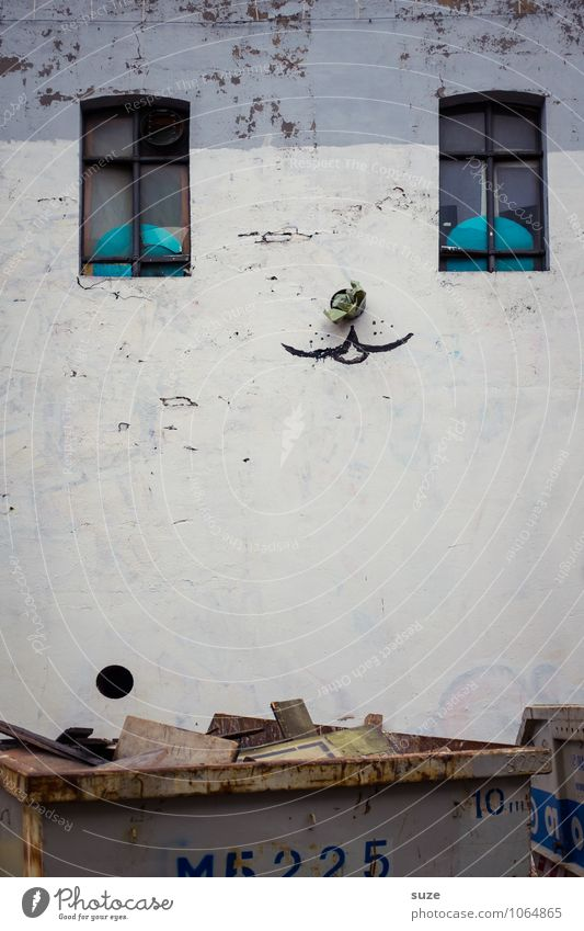 hangover mood Lifestyle Style Design House (Residential Structure) Art Culture Youth culture Outskirts Wall (barrier) Wall (building) Facade Window Cat