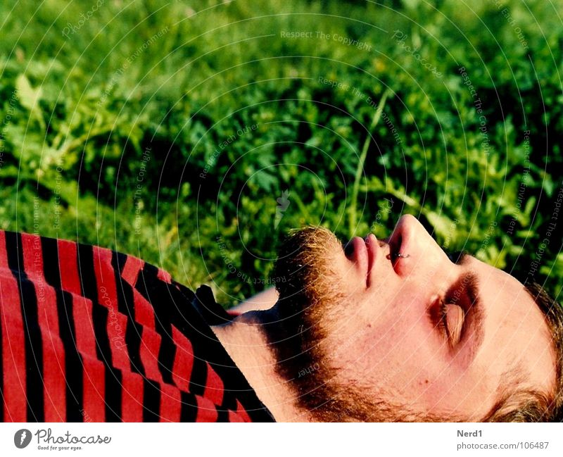 Man Youth (Young adults) Green Red Calm Relaxation Meadow Head Dream Contentment Nose Lie Sleep Stripe Facial hair