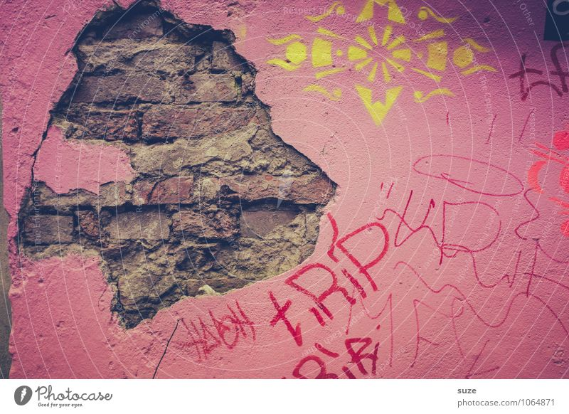 king of the lions Art Work of art Wall (barrier) Wall (building) Facade Old Authentic Dirty Broken Funny Pink Stagnating Decline Transience Hamburg Dismantling