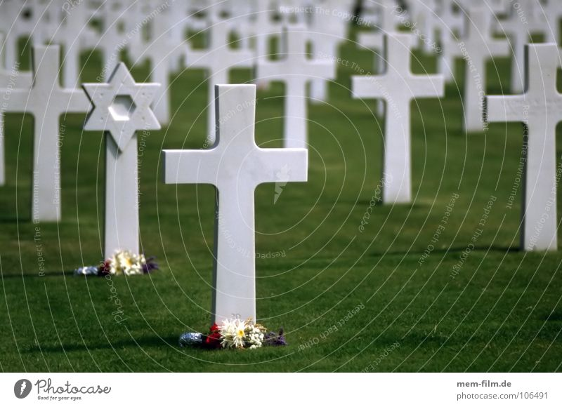graves 2 Monument Military cemetery Futile Grave Star of David Judaism War Soldier Cemetery Army Grass Eternity Green World War Souvenir Warning Memory Remember