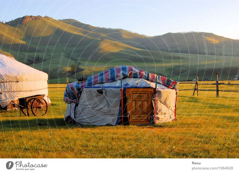 Mongolian Yurt Ger tent Human being Nature Vacation & Travel Summer Lifestyle Horizon Design Adventure Asia Tourist Steppe Old fashioned The Altai Mountains