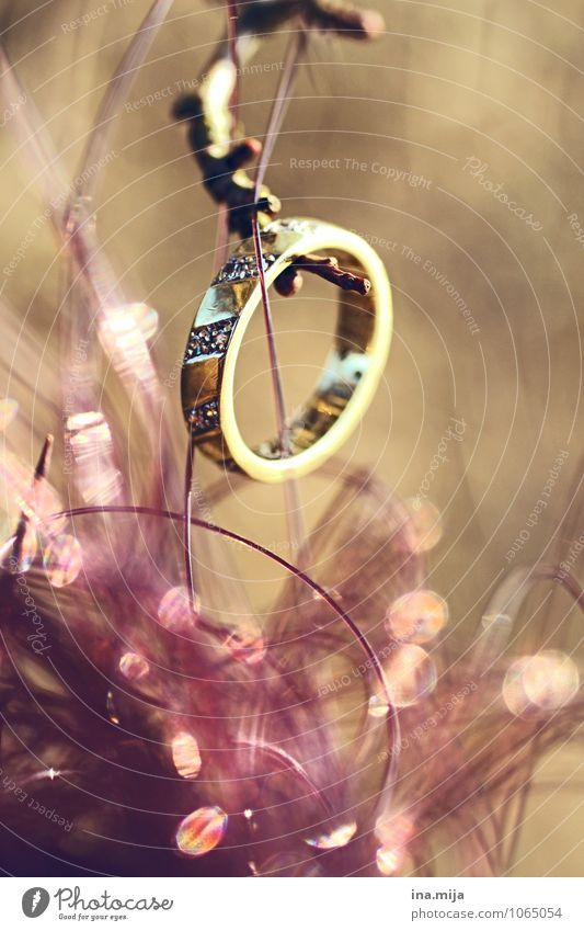 Love Wood Feasts & Celebrations Metal Circle Gold Romance Sign Round Eternity Wedding Infinity Symbols and metaphors Infatuation Ring Jewellery