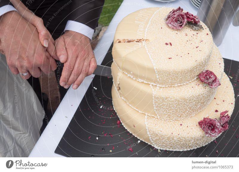 wedding cake Cake Wedding Hand 2 Human being Together Eternity Hope Life Love Future Married couple marriage Gateau Matrimony Baked goods Knives Couple cut