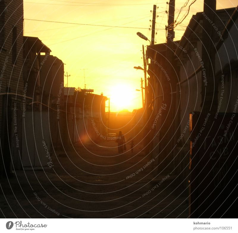 HOME WAY Sunset Back-light Alley Uzbekistan House (Residential Structure) Transmission lines To go for a walk Exterior shot Peace Warmth Street Happy Orange