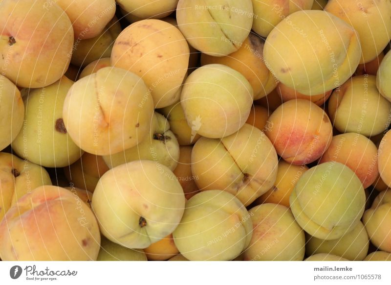 apricots Agricultural crop Exotic Fruit Apricot Esthetic Fragrance Authentic Fresh Above Round Sweet Colour photo Multicoloured Exterior shot Close-up Detail